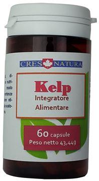 kelp 60 capsule, pilloliere